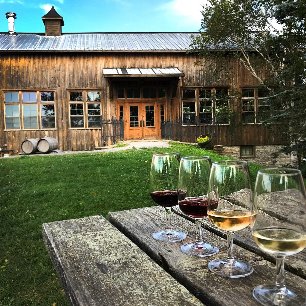 Wine Tours Toronto to Prince Edward County
