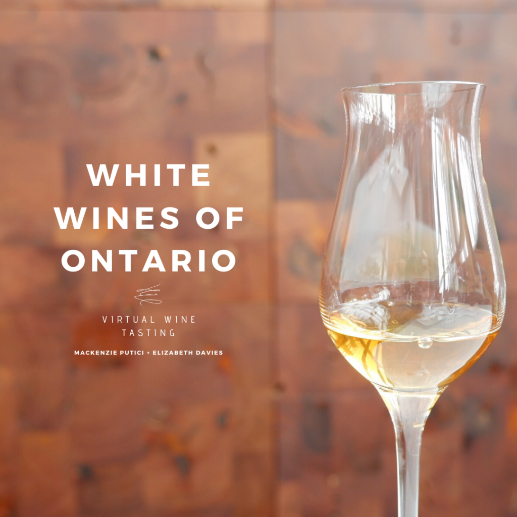 white wines of Ontario virtual tasting ed wine co new world wine tours