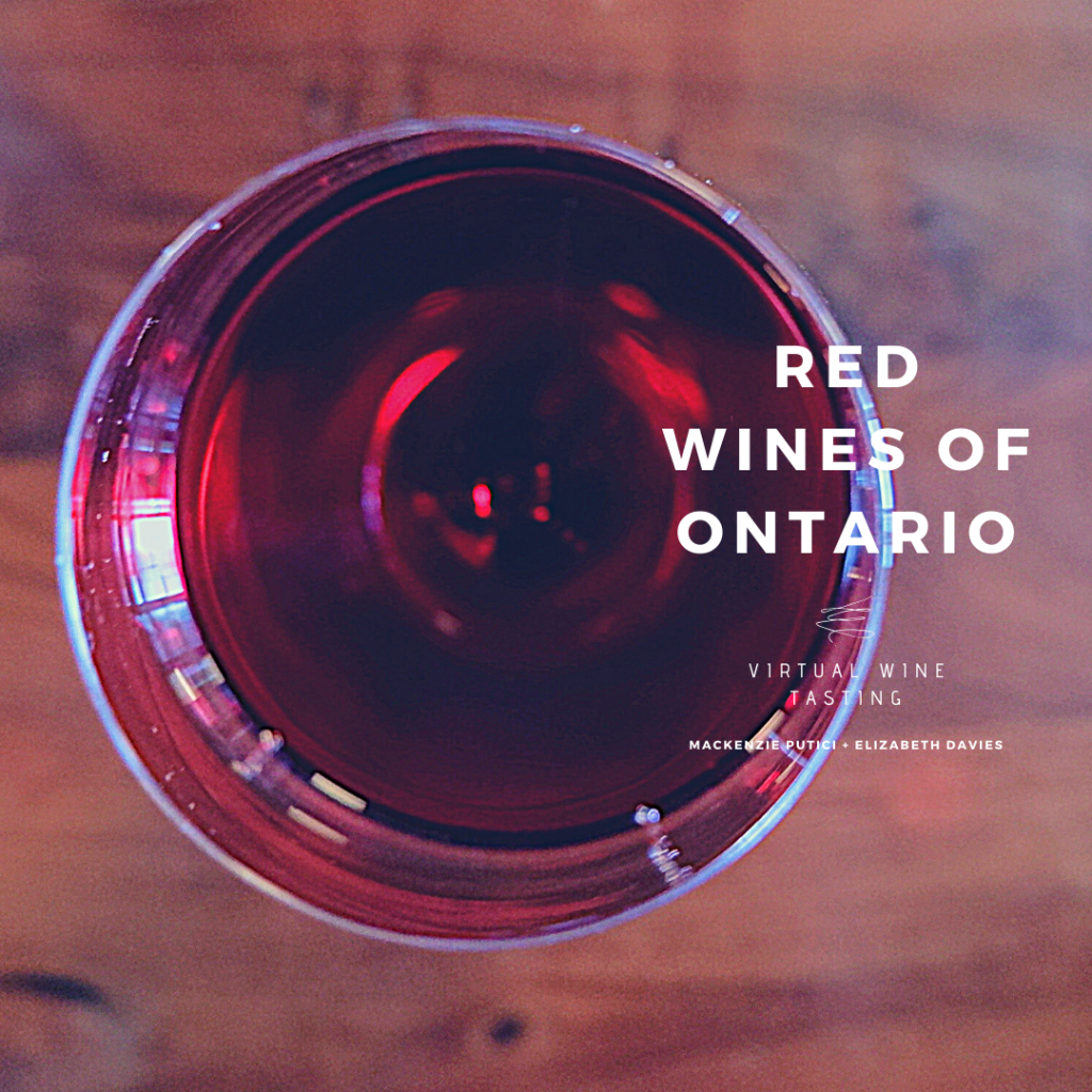 red wines of Ontario virtual tasting ed wine co new world wine tours