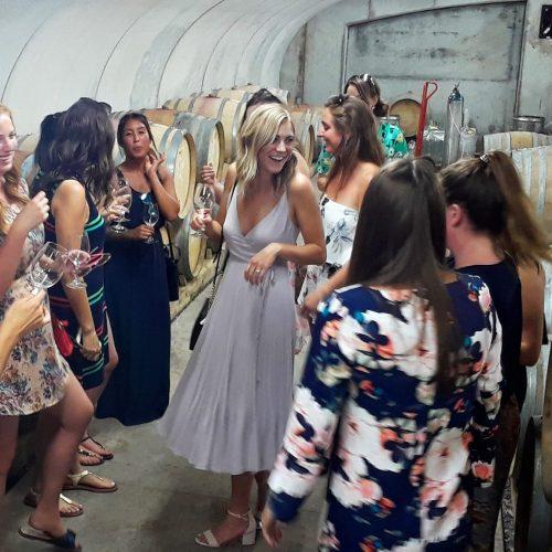bridal party in wine cellar