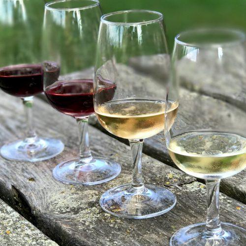 wine glasses CU on picnic table